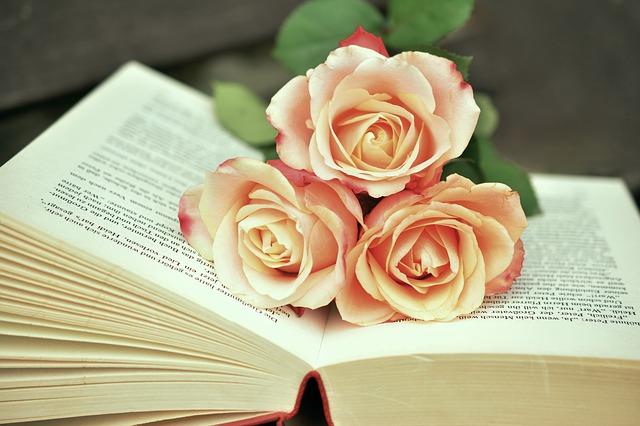 Shopkategorie Empfohlene Literatur - Aloe Bücher