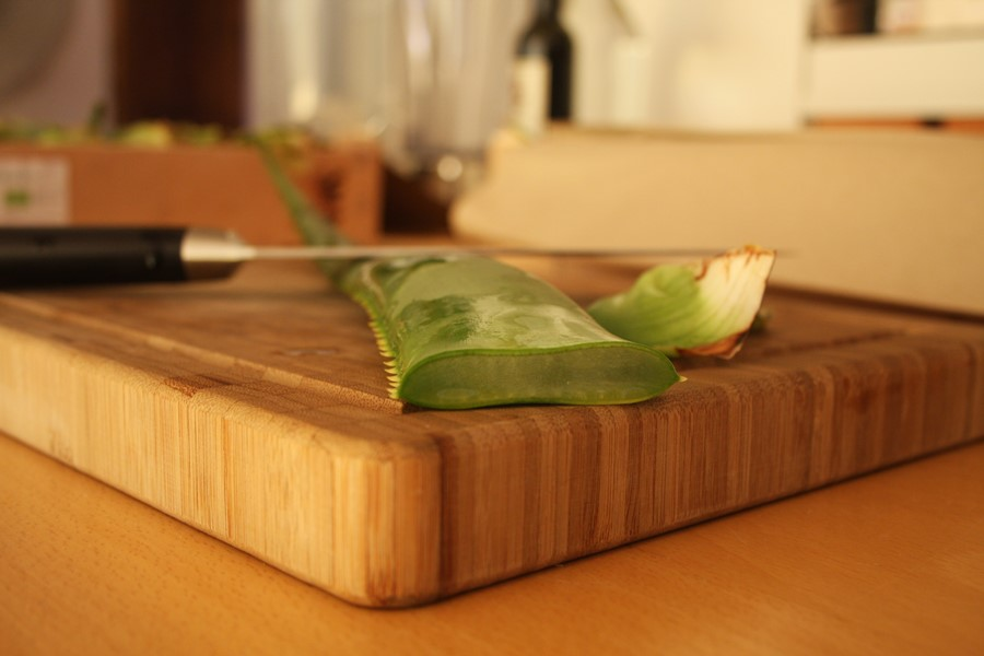 Anschnitt eines Aloe Arborescens Blattes - Wie Sie das Aloe Blatt zubereiten können