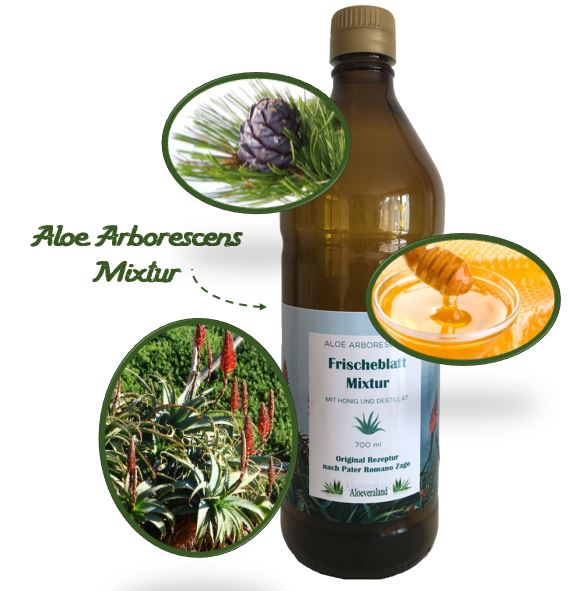 Aloe Mixtur nach Pater Zago in der 700 ml Glasflasche